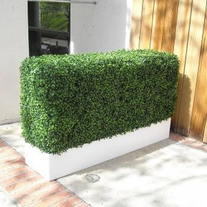 72in.H Boxwood Hedge Privacy Screen in Modern Fiberglass Planter, Outdoor Rated