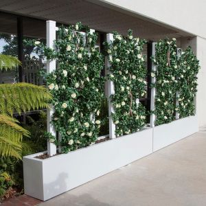 Azalea Trellis Space Divider in Fiberglass Planter 72in.L x 12in.W x 72in.H, Outdoor Rated