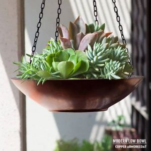 Modern Low Bowl Hanging Baskets