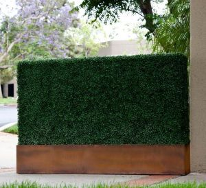 Faux boxwood hedge in corten planter