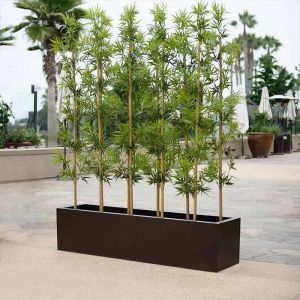 Bamboo Groves with Planter, Outdoor