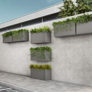 Wall Mount Planters