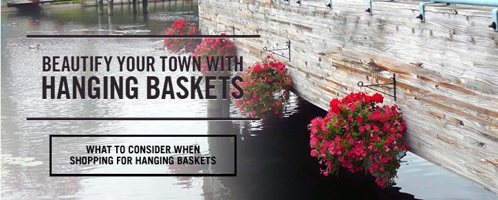 Beautify your town with Hanging Baskets