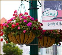 Hanging Baskets installed in Little Italy, San Diego, CA