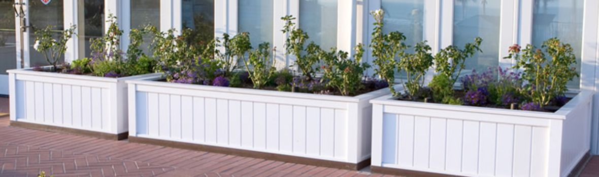 Best Commercial Planter Choices by Material